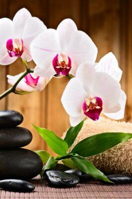 Érzéki Kezek Massage